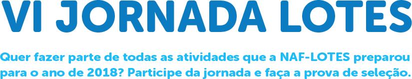 VI Jornada Lotes